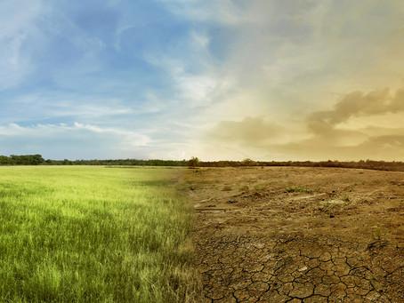 Observaciones Ley Cambio Climático