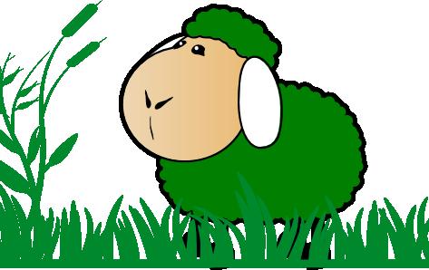 Ovejas verdes en el camino: de la individualidad a la colectividad para la Educación Ambiental