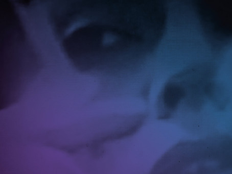 #review: The Callas - Είμαι Ένα Ξενοδοχείο