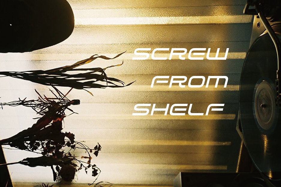 Screw-from-shelf.jpg