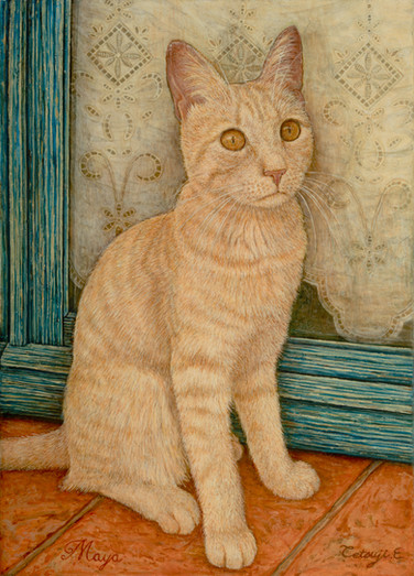 Maya the Kitty