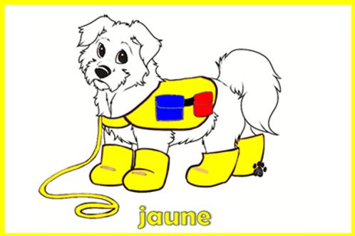 chien habillé pour apprendre les couleurs