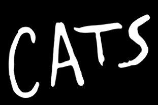 Cats-Banner-