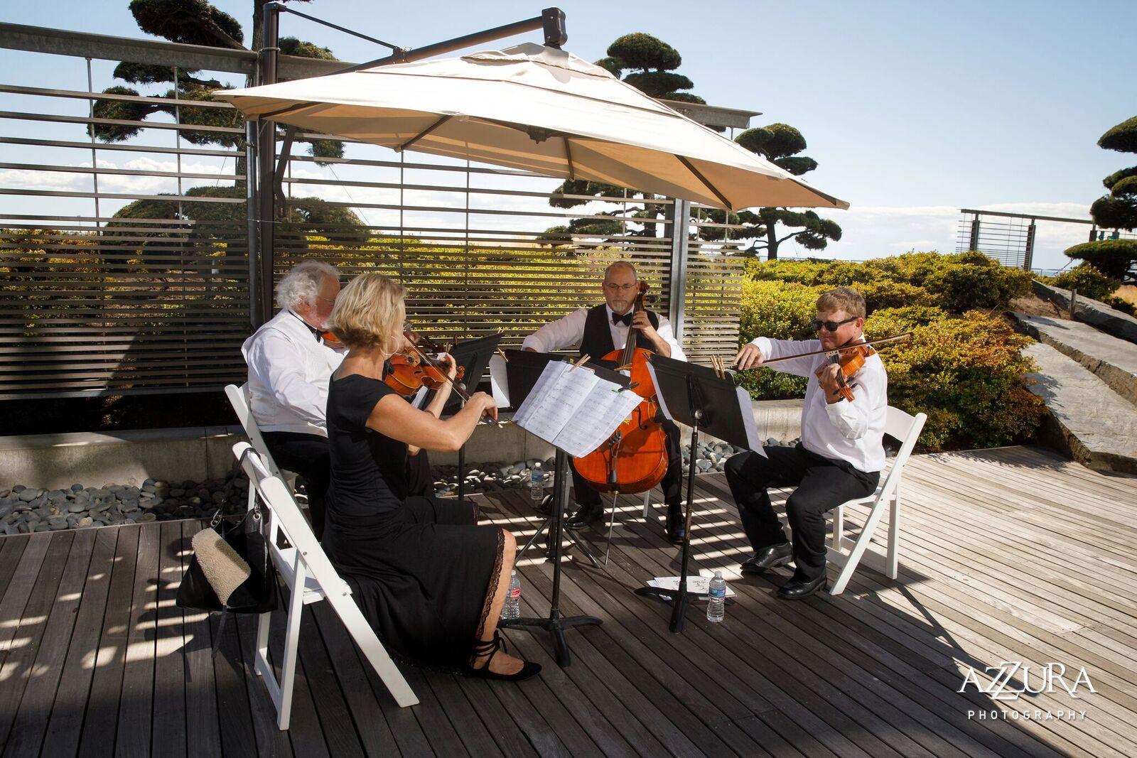 String Quartet at The Four Season