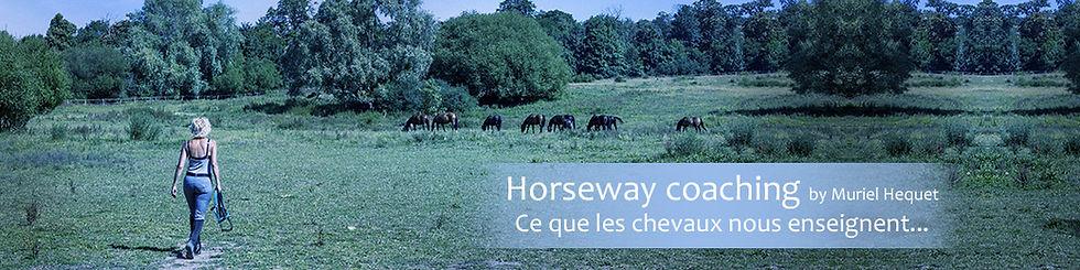 bandeau-HorsewayCoaching-by-MH.jpg