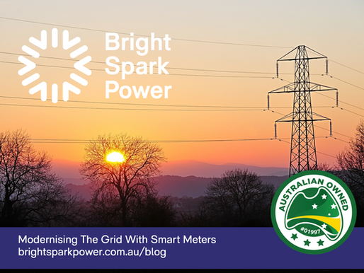 Modernising the Grid with Smart Meters