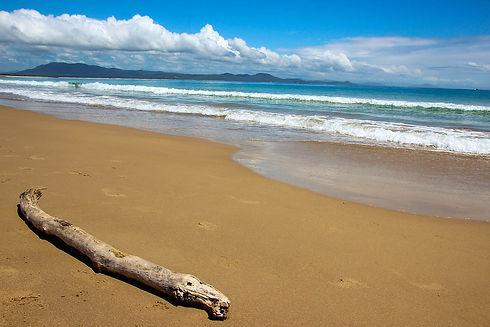best-electricity-log-beach-australia.jpg