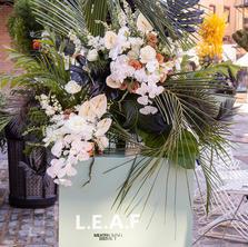 Sage Realty by Flower Bodega