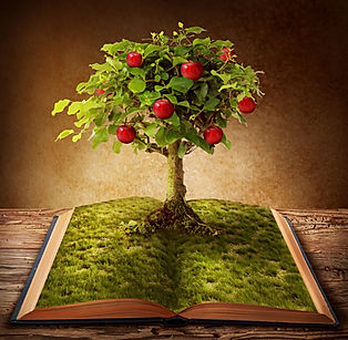 Tree of knowledge growing out of book.jp