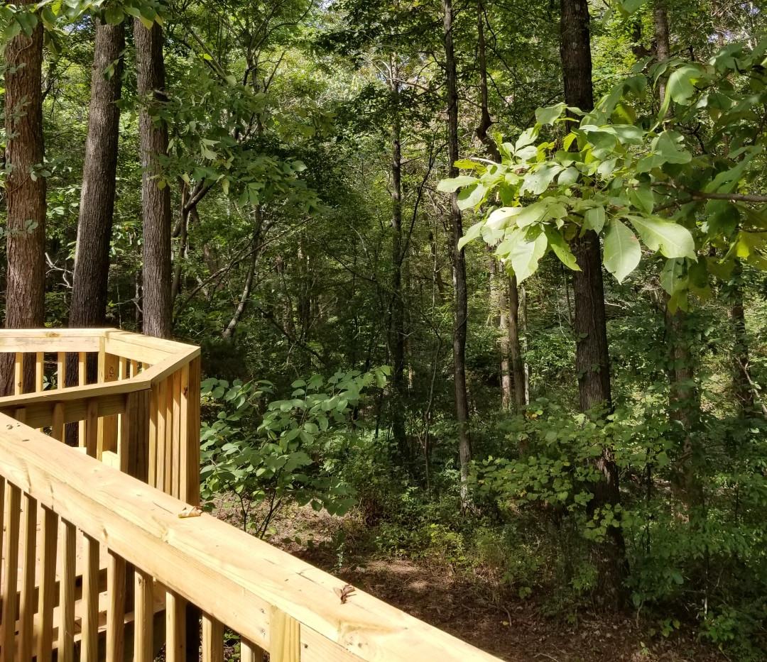 The Owls' Landing Pavilion Deck
