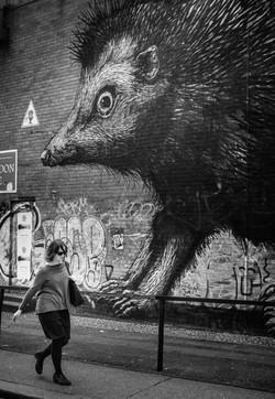 ROA, street art