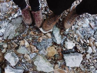 Steep Ravine Trail (Marin County, NorCal)