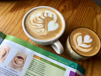 Snowbird Coffee (SF, Inner Sunset)