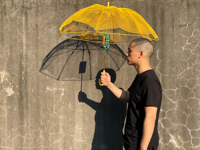 Biofilm Umbrella 2