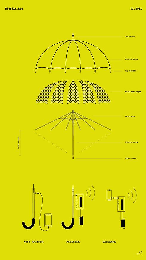Biofilm Umbrella Schematic.png