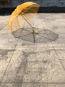 Biofilm Umbrella 1