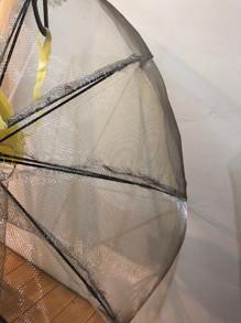 Biofilm Umbrella 8