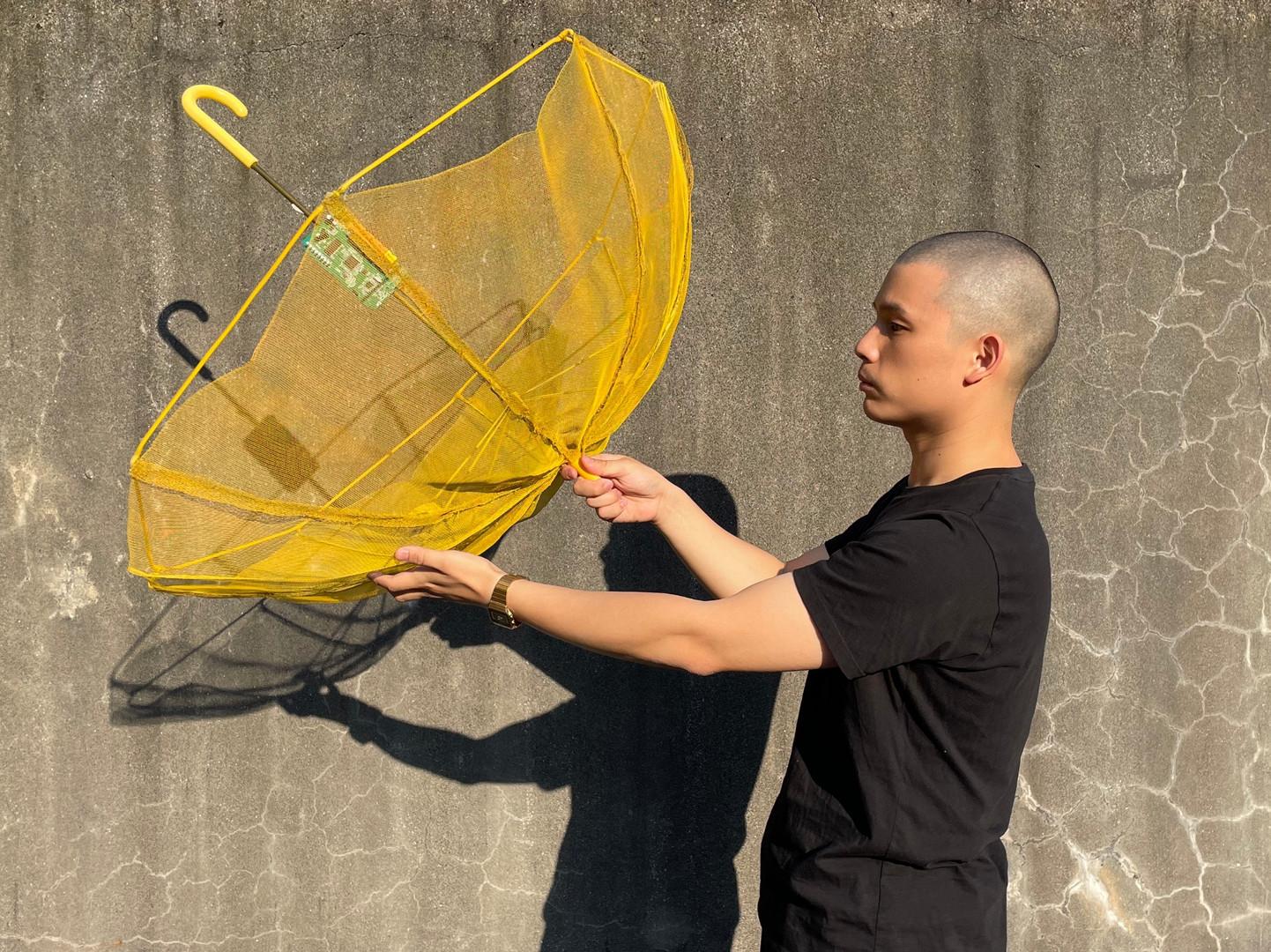Biofilm Umbrella 3