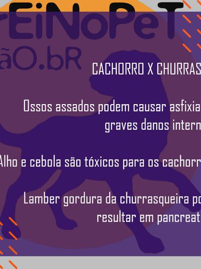 Cachorro X Churrasco