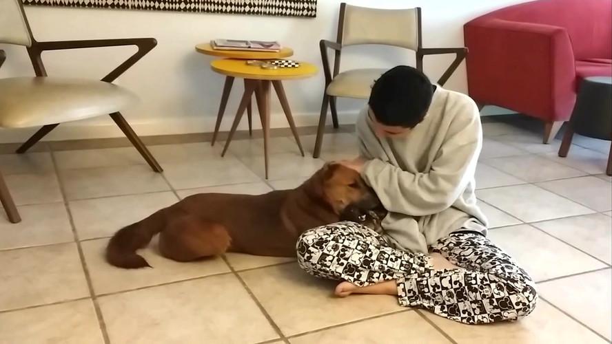 Rê e a Shiba com mordedor