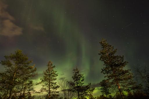 אורות הצפון לפלנד פינלנד על גבול החוג הארקטי
