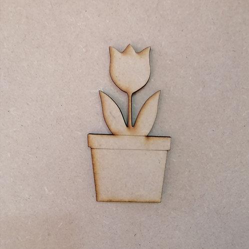 Tulip in a pot