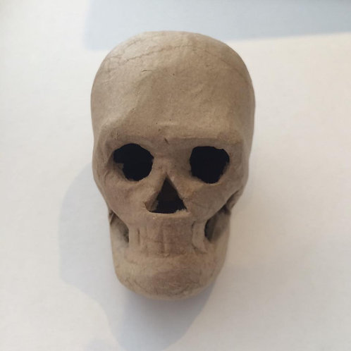 3D Skull