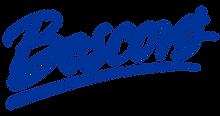 Boscov's_Logo.svg.png