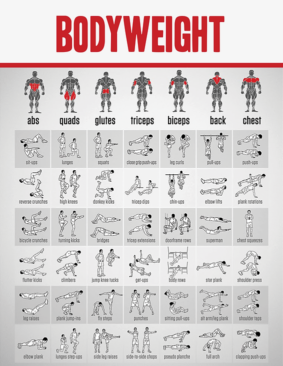 bodyweight-1.png