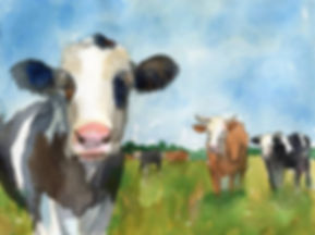 Cow-art--farm-animals--watercolor_art.jp