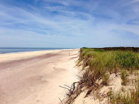 Fire Island Pines Property Management