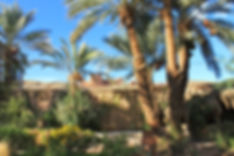 Kasbah de l Ecolodge Babel Oued Maro