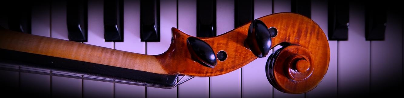 Violin%25252520neck%25252520on%25252520p