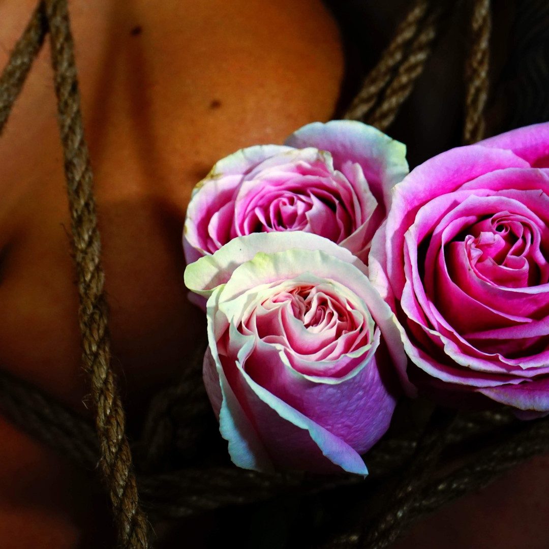 nilajacashphotography flower and rope ed
