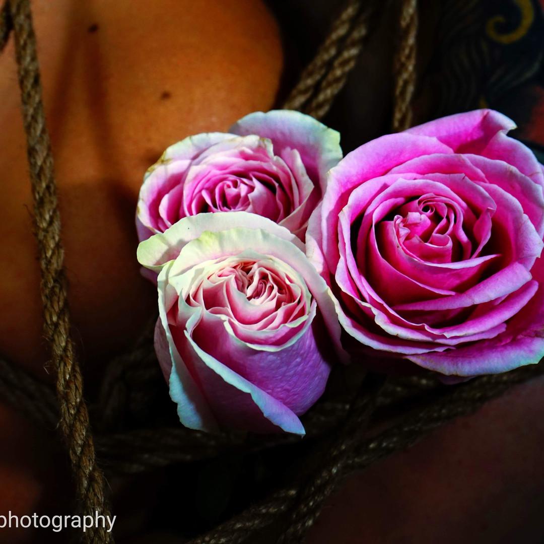 _nilajacashphotography flower and rope.j