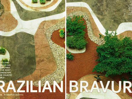 Brazilian Bravura - Garden Design