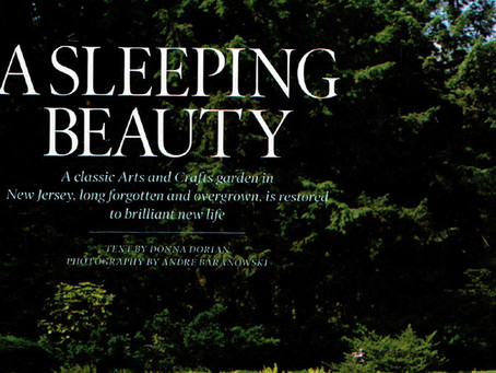 A Sleeping Beauty - Greenwood - Elle Decor