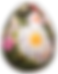 eggs-672460_1280.png