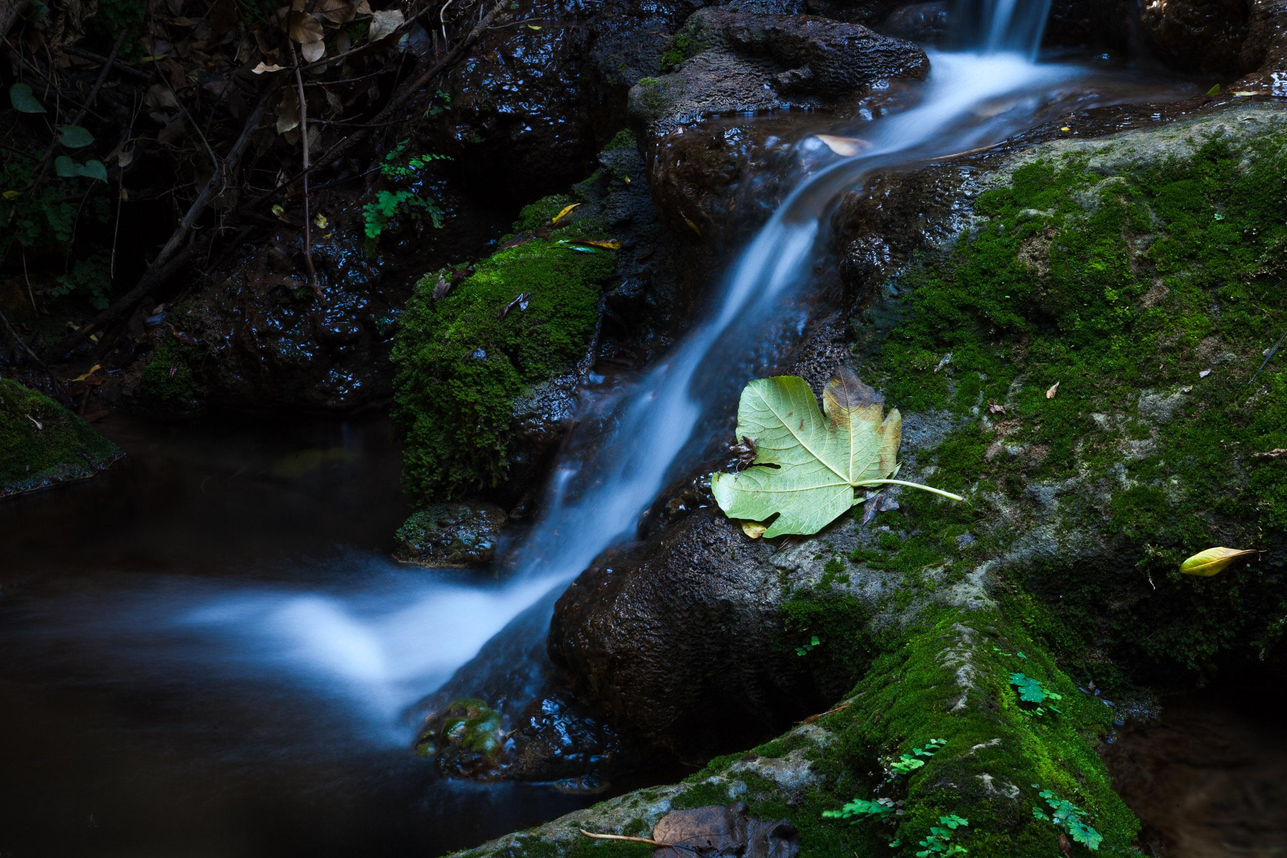 Amud Creek
