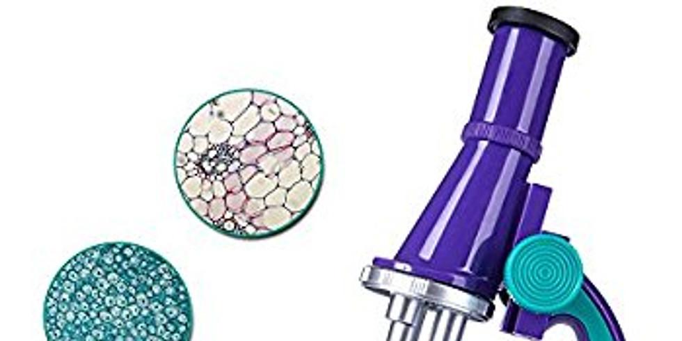 Mikroszkópos bemutató