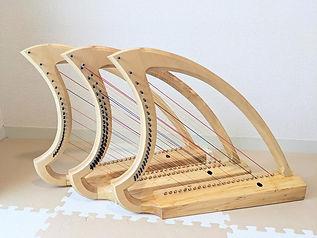 harp simon.jpg