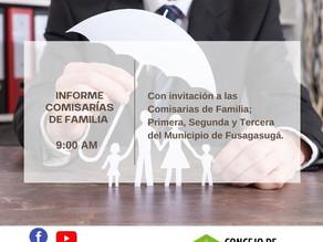 Informe Comisarias de Familia