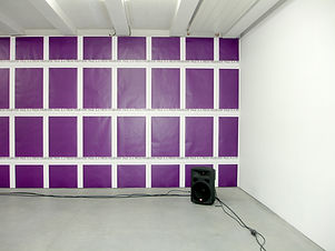 Simona Brinkmann, Ghost Herd - multichannel sound installation, surround sound bison stampede, spatial sound, low frequency hooves rumble, sound as sculpture, contemporary art, Netwerk centrum voor hedendaagse kunst, Aalst, Belgium, New Reform