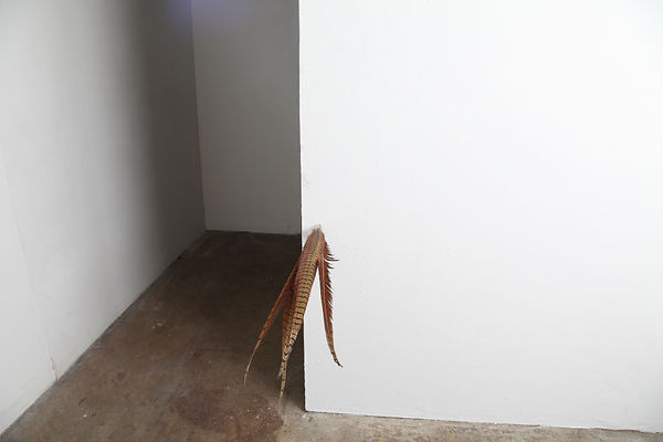 Simona Brinkmann, detail of exhibition view, Blank Stare Flat Hollow, solo show at Five Years, London. Buffer II, feather sculpture, contemporary art.