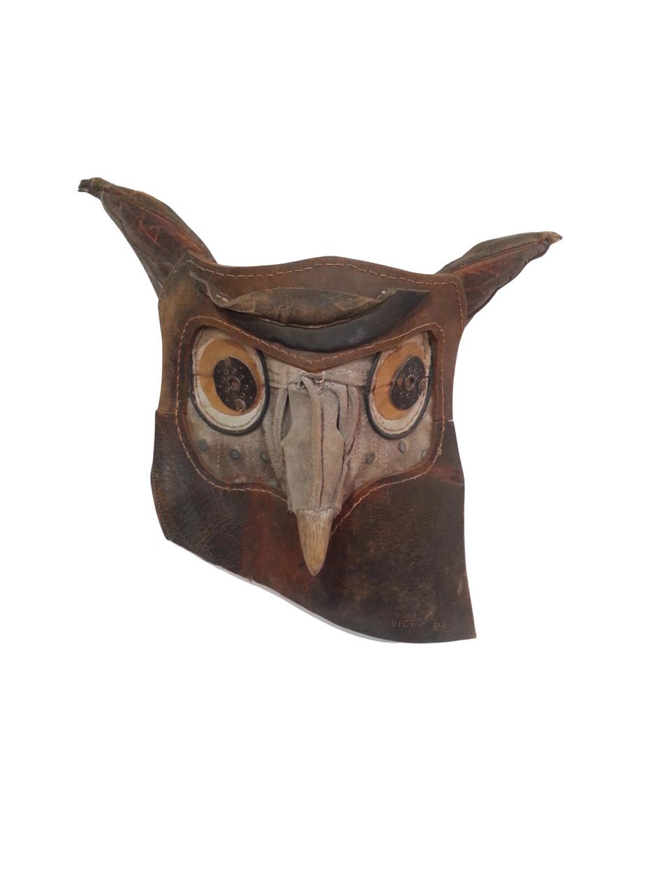 Zizi harina nyanga / Owl does not have horns (2020)