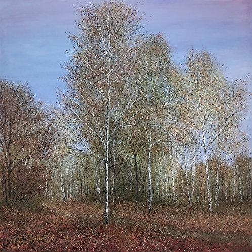 Soft Autumn Light 71x71cm