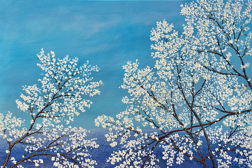 The First Blossom Of Spring 61x91cm