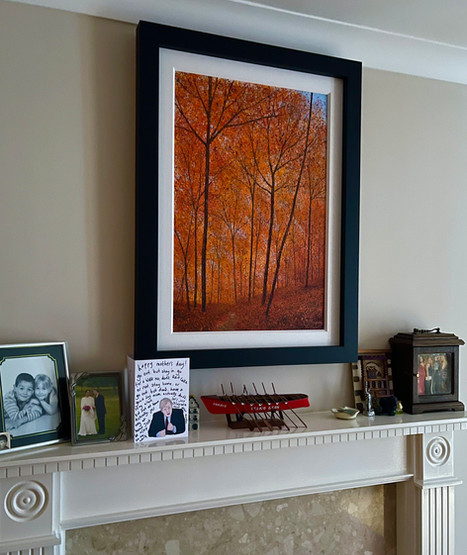 Lichfield In Situ Autumn.jpg