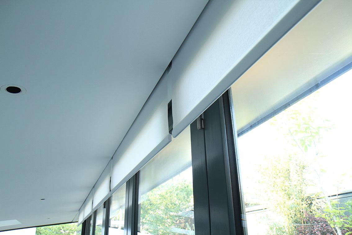 Concealed blinds 2