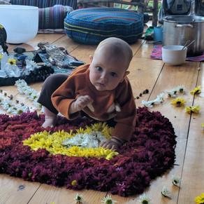 Bodhi In the Flowers.jpg